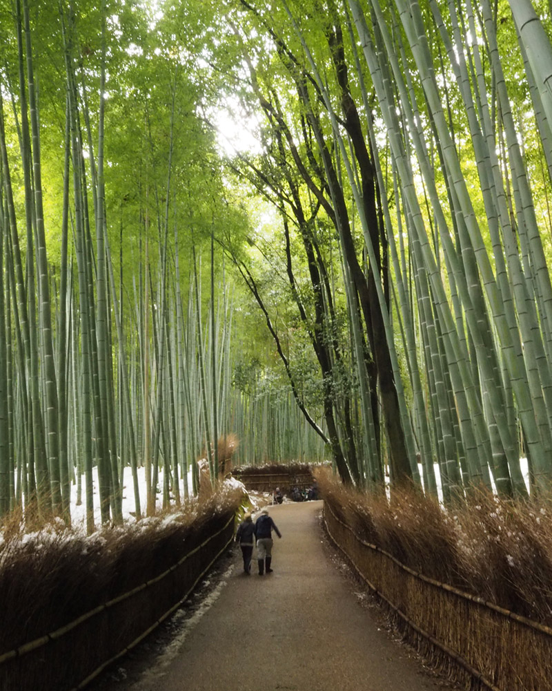 Family on trip – Kyoto – Arashiyama