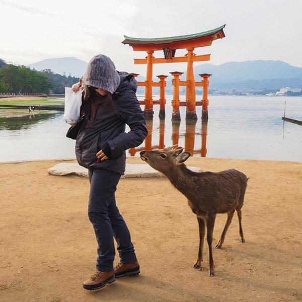 Family on trip – Miyajima