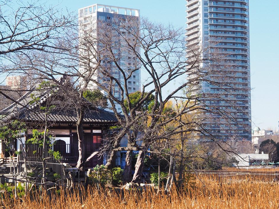 Family on trip – Tokyo – Ueno